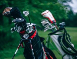 standard golf pic
